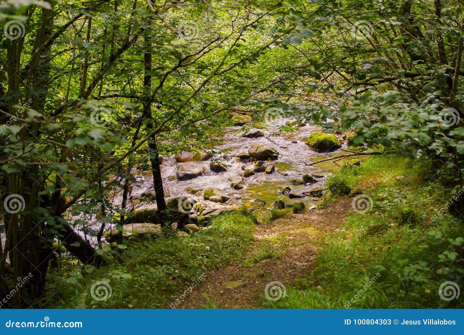 Stenar i den Majaceite floden i El Bosque, Spanien