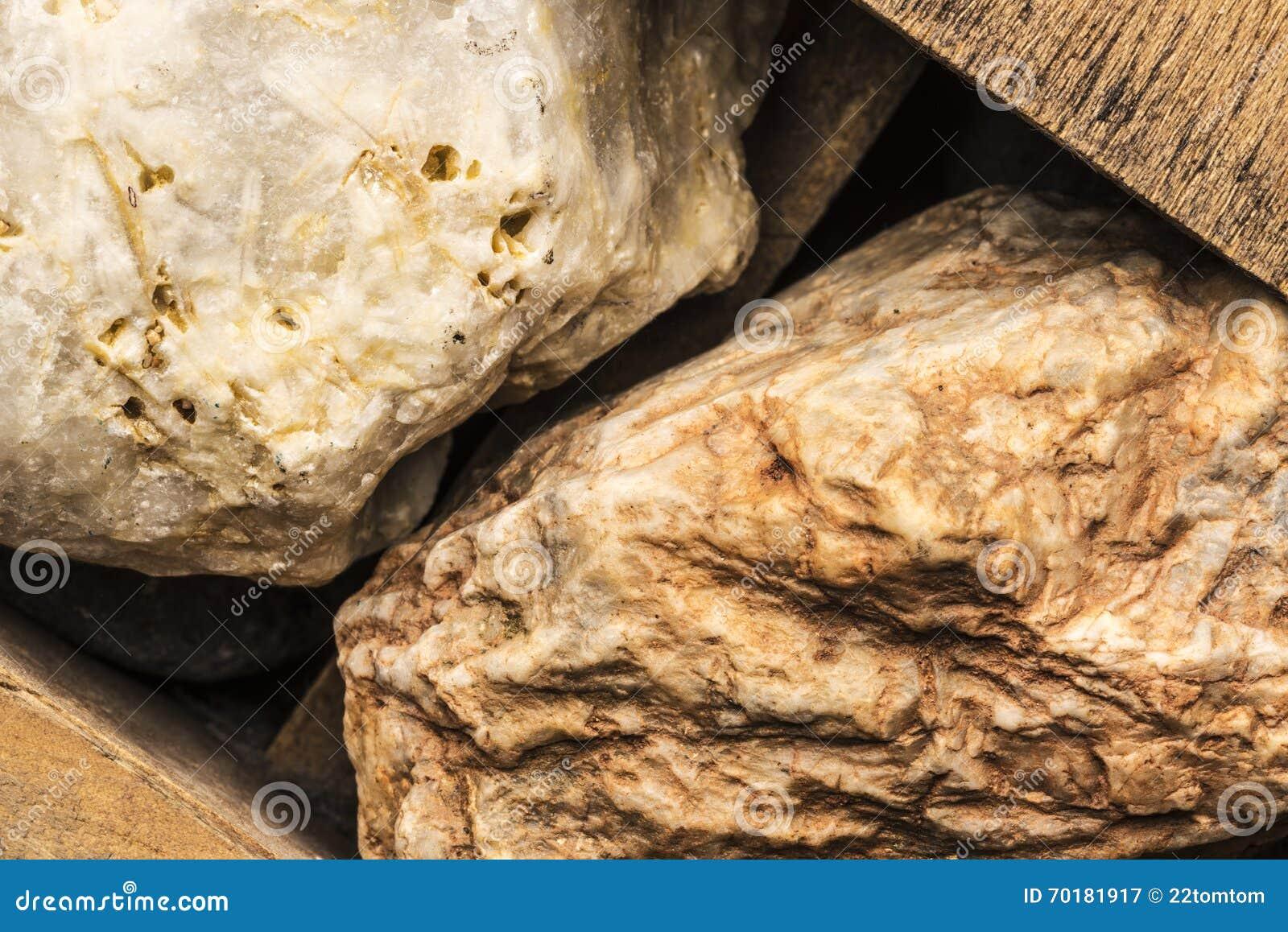 Stenar inom en gammal ask