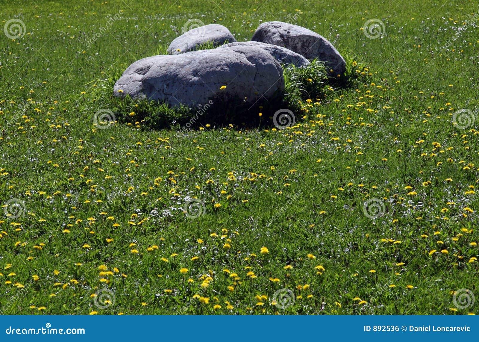 Stenen bij het gebied
