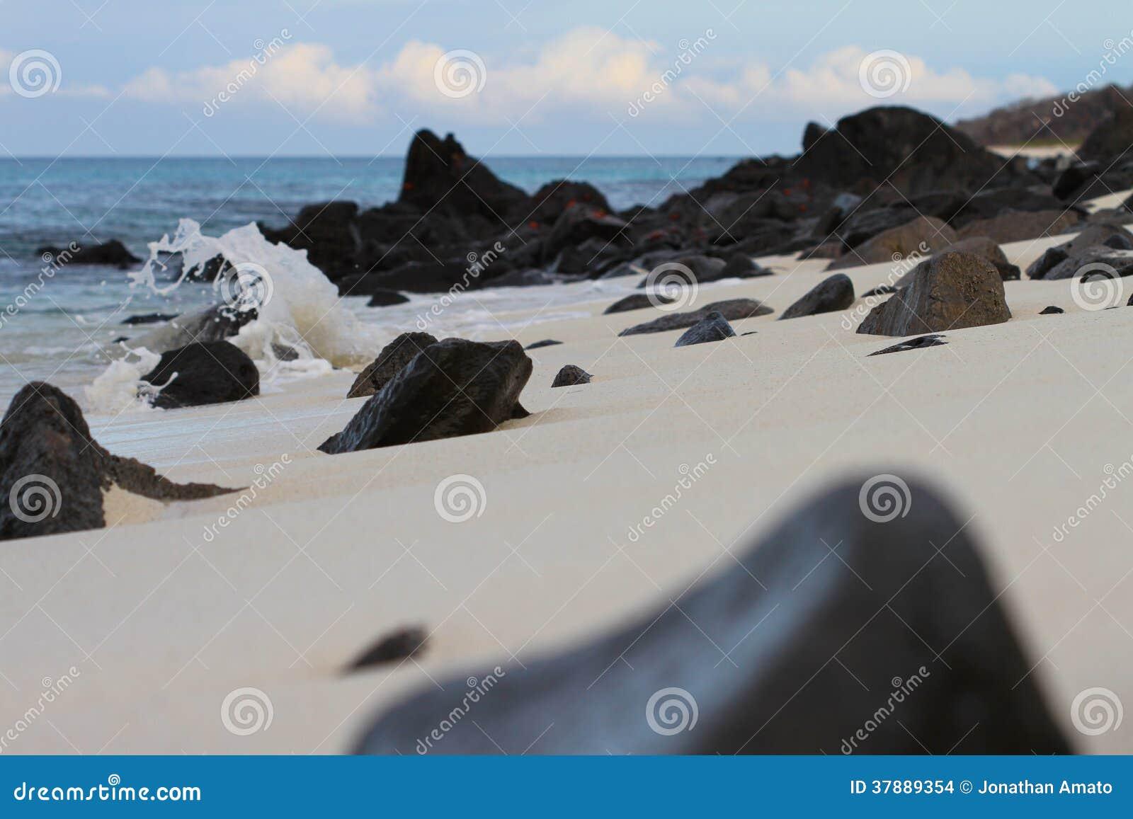 Stenen en Krabben