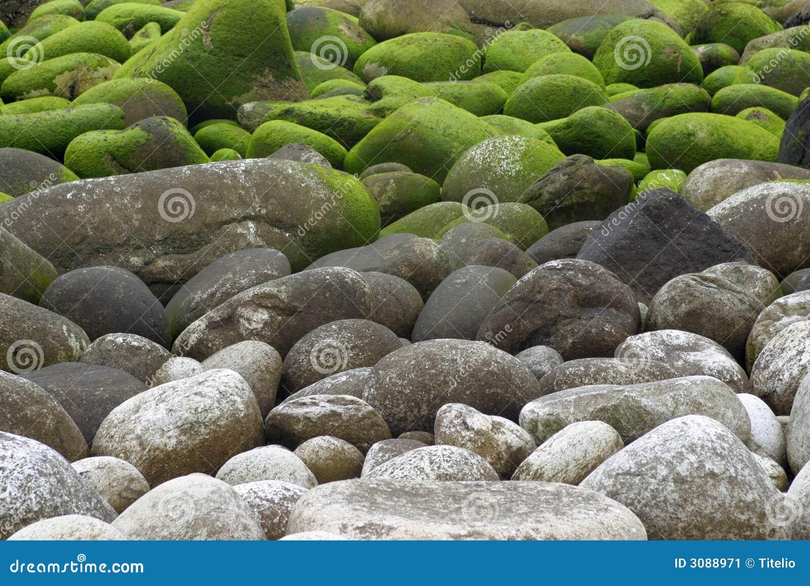 Stenen met mos stock afbeelding afbeelding 3088971 - Tuinuitleg met stenen ...