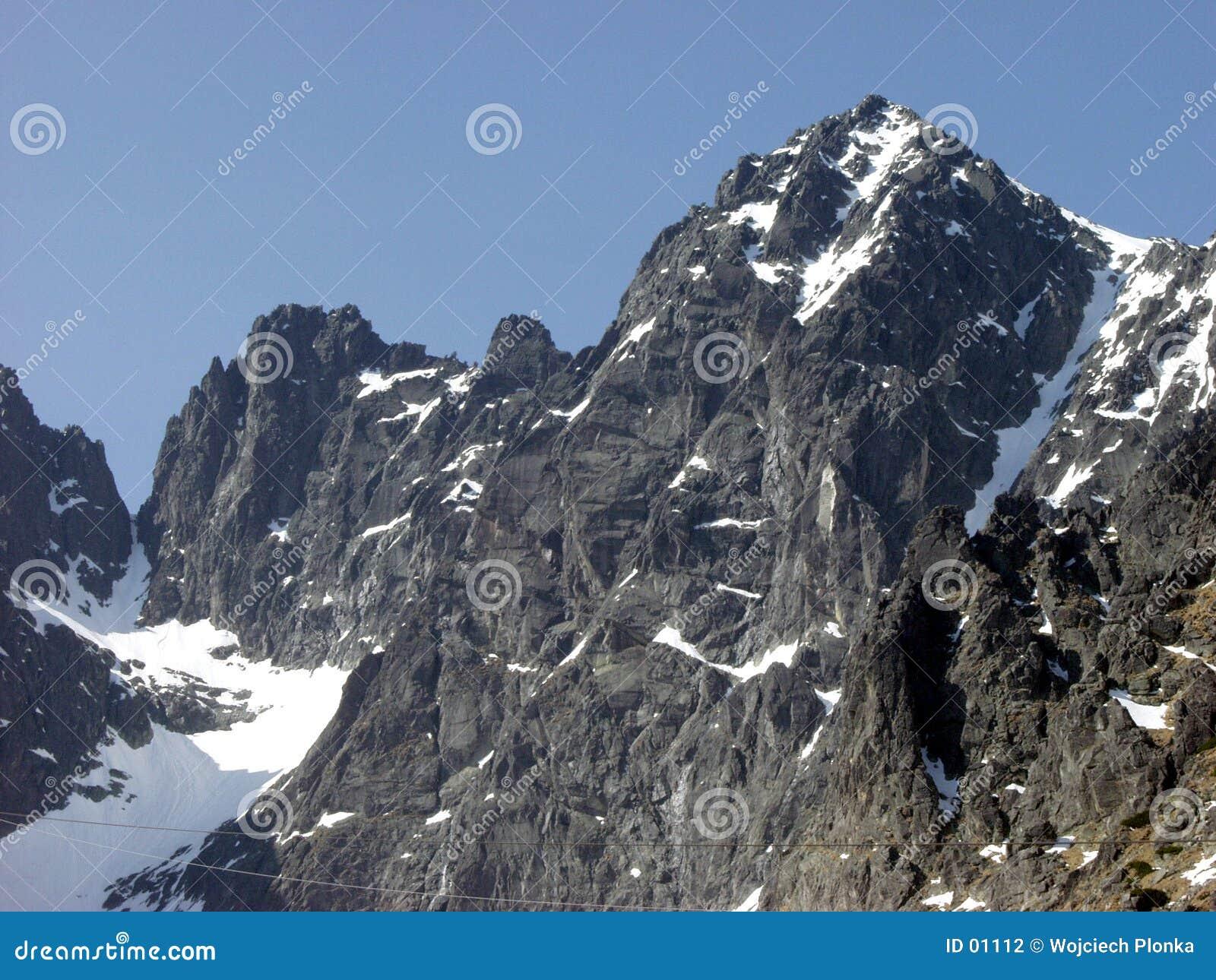 Stenigt berg