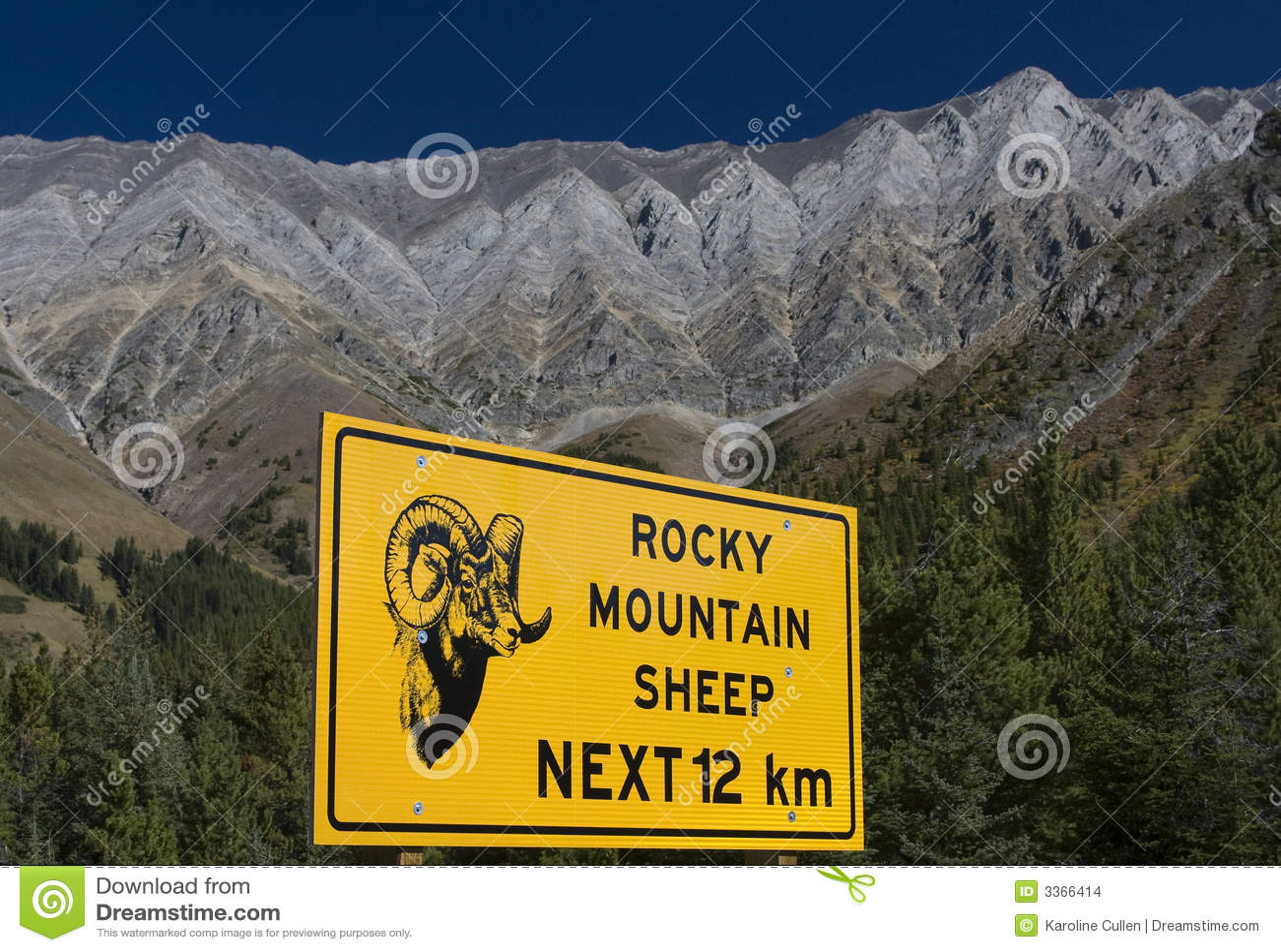 Stenigt fårtecken för berg