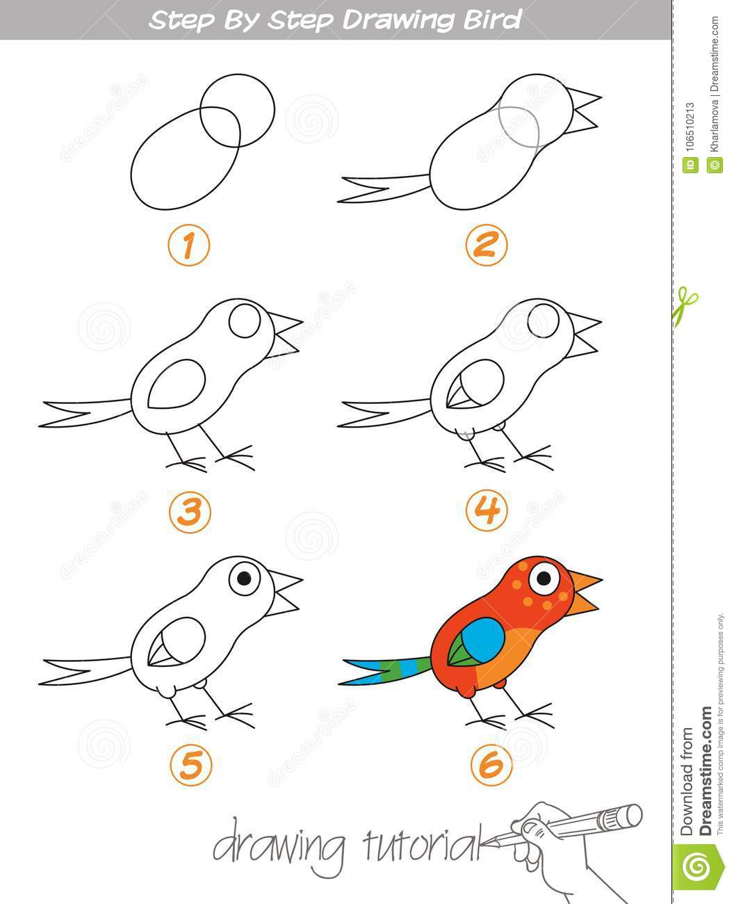 Step By Step Drawing Bird Stock Vector Illustration Of Logic