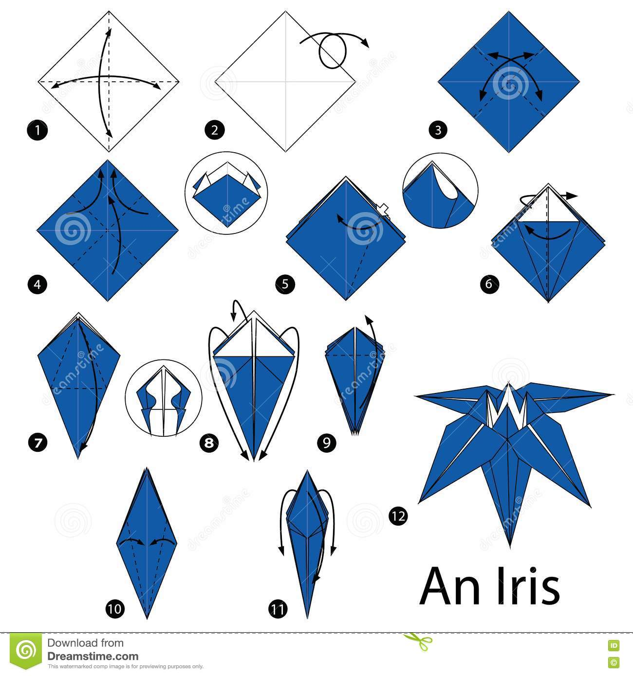 Step By Step Instructions How To Make Origami An Iris Stock Vector