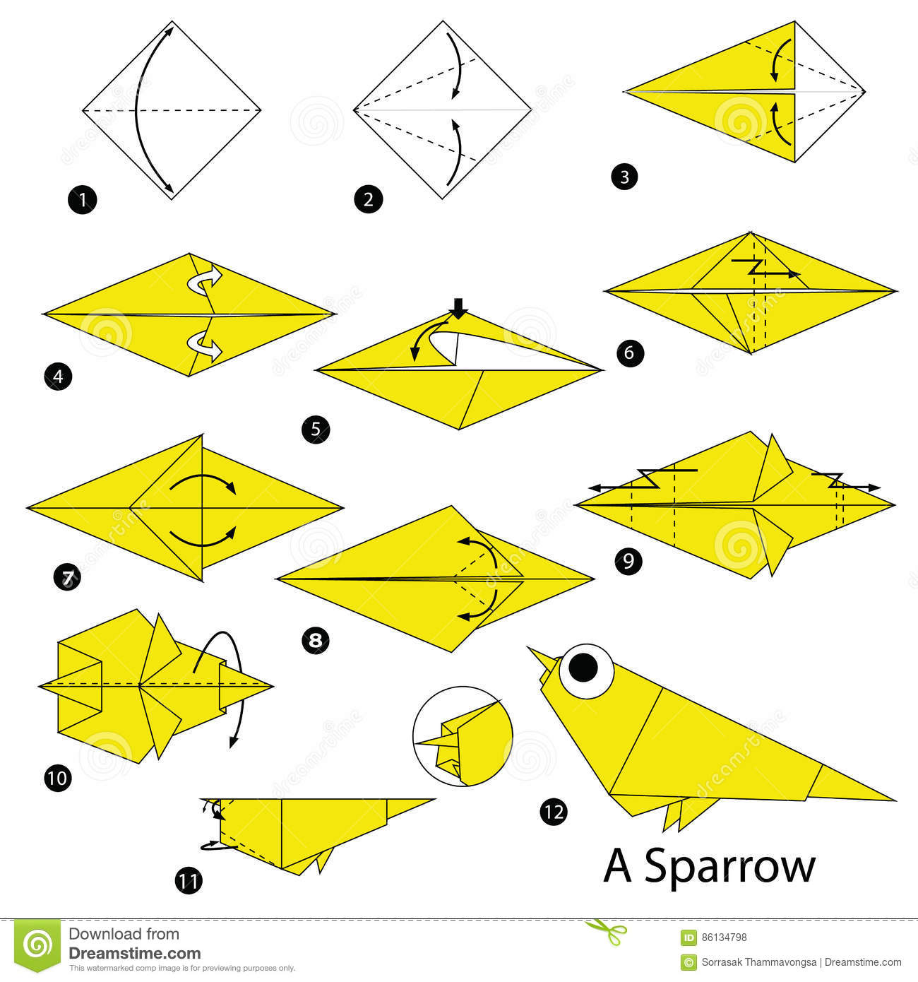 Step By Instructions How To Make Origami A Sparrow Stock