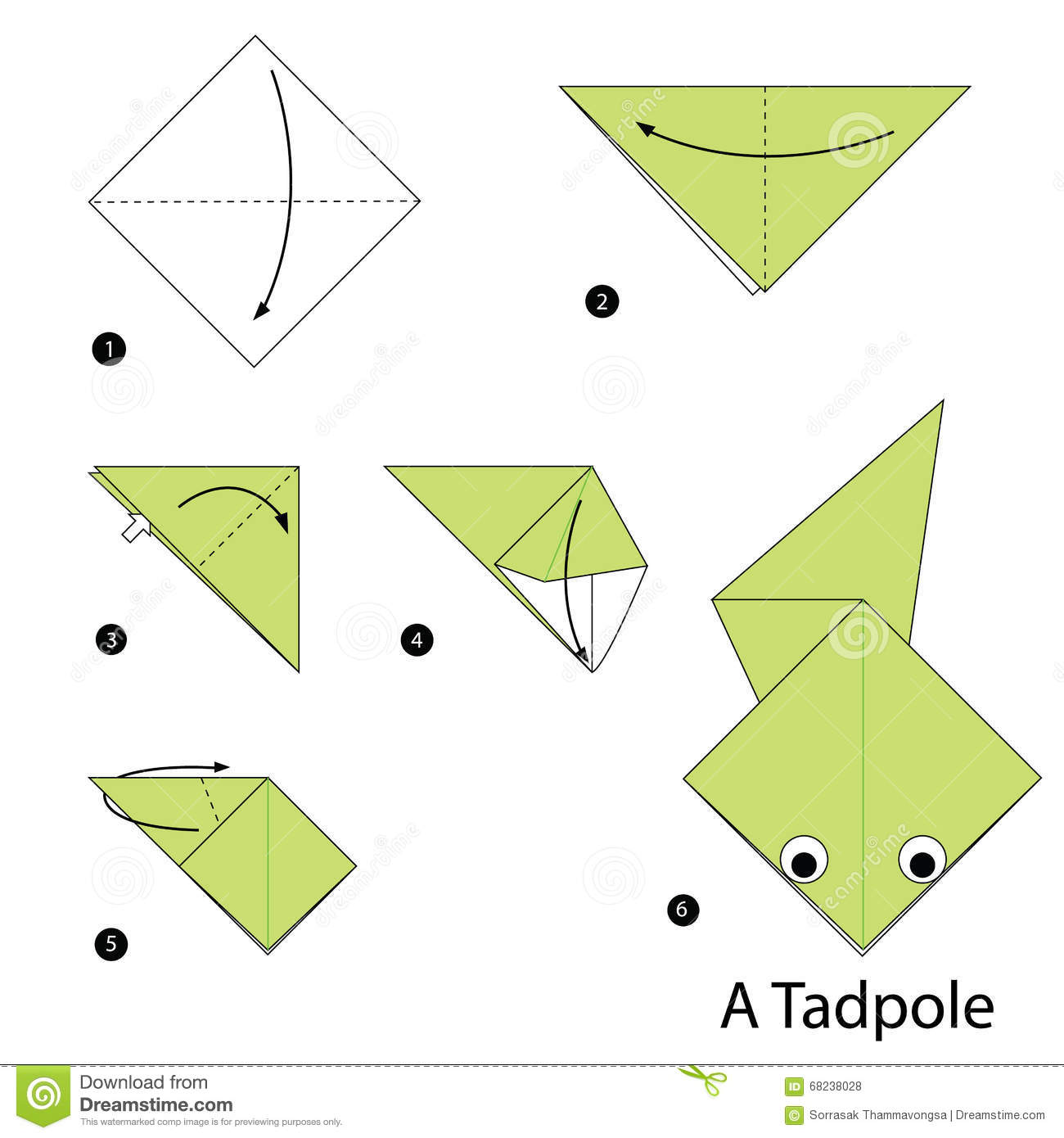 Step By Instructions How To Make Origami A Tadpole