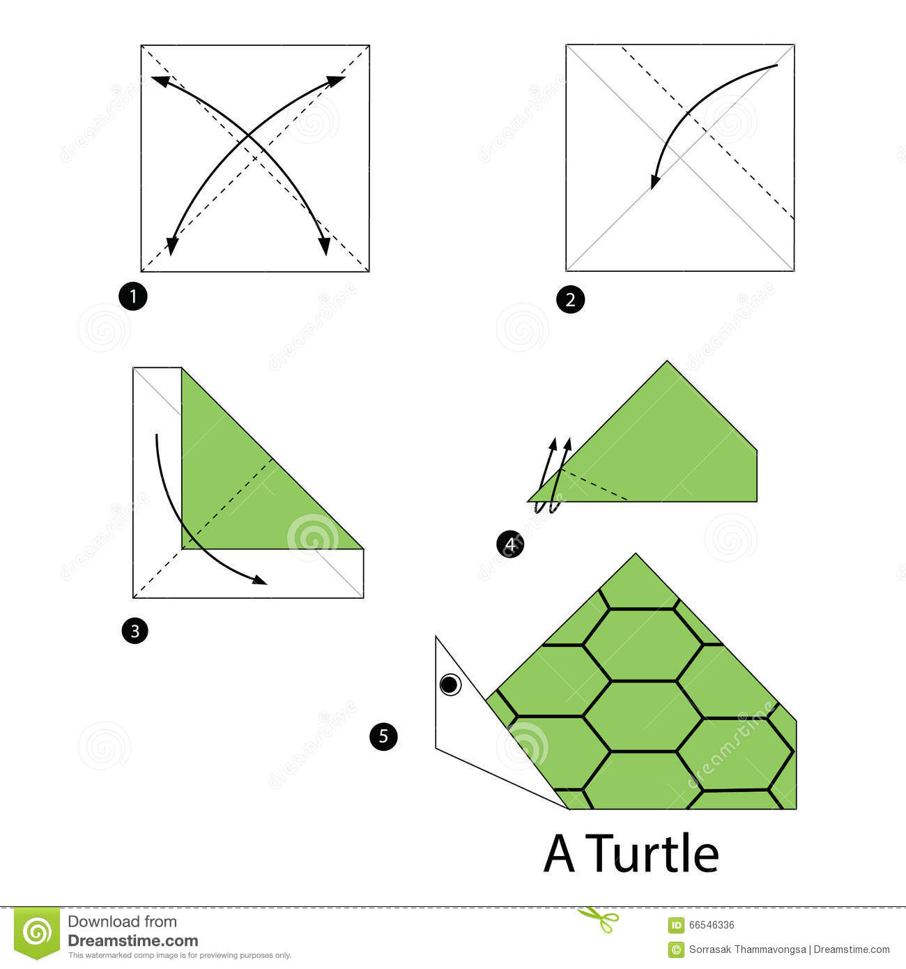How To Make Easy Origami Turtle
