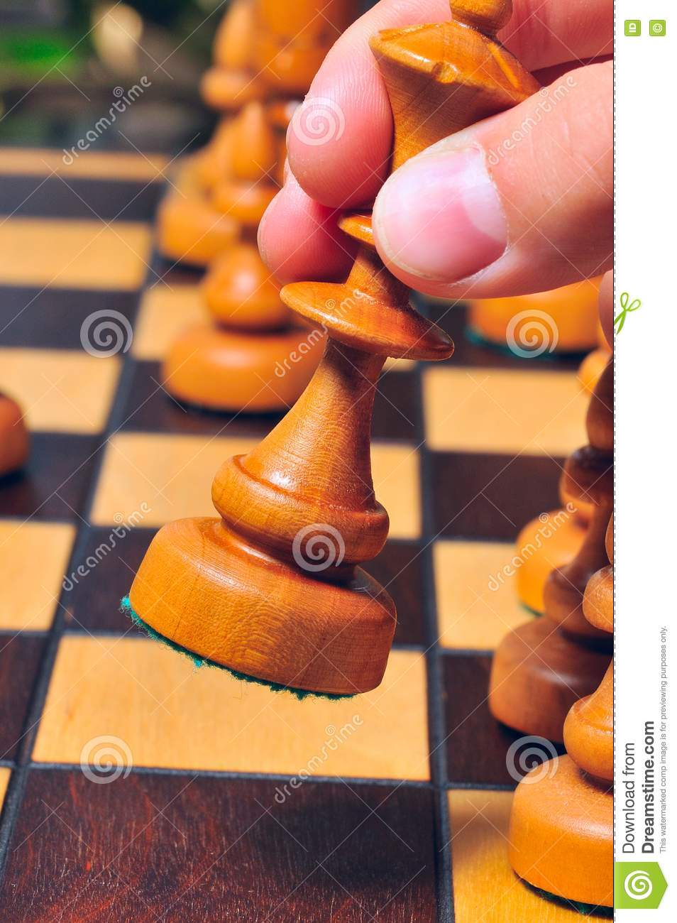 Step White Queen Stock Photo Image Of Competitive