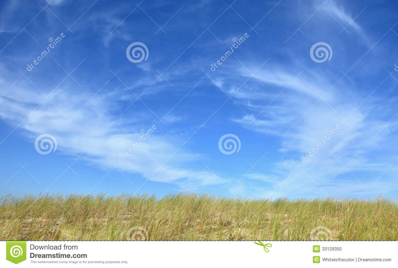 Steppe landscape with a blue sky above