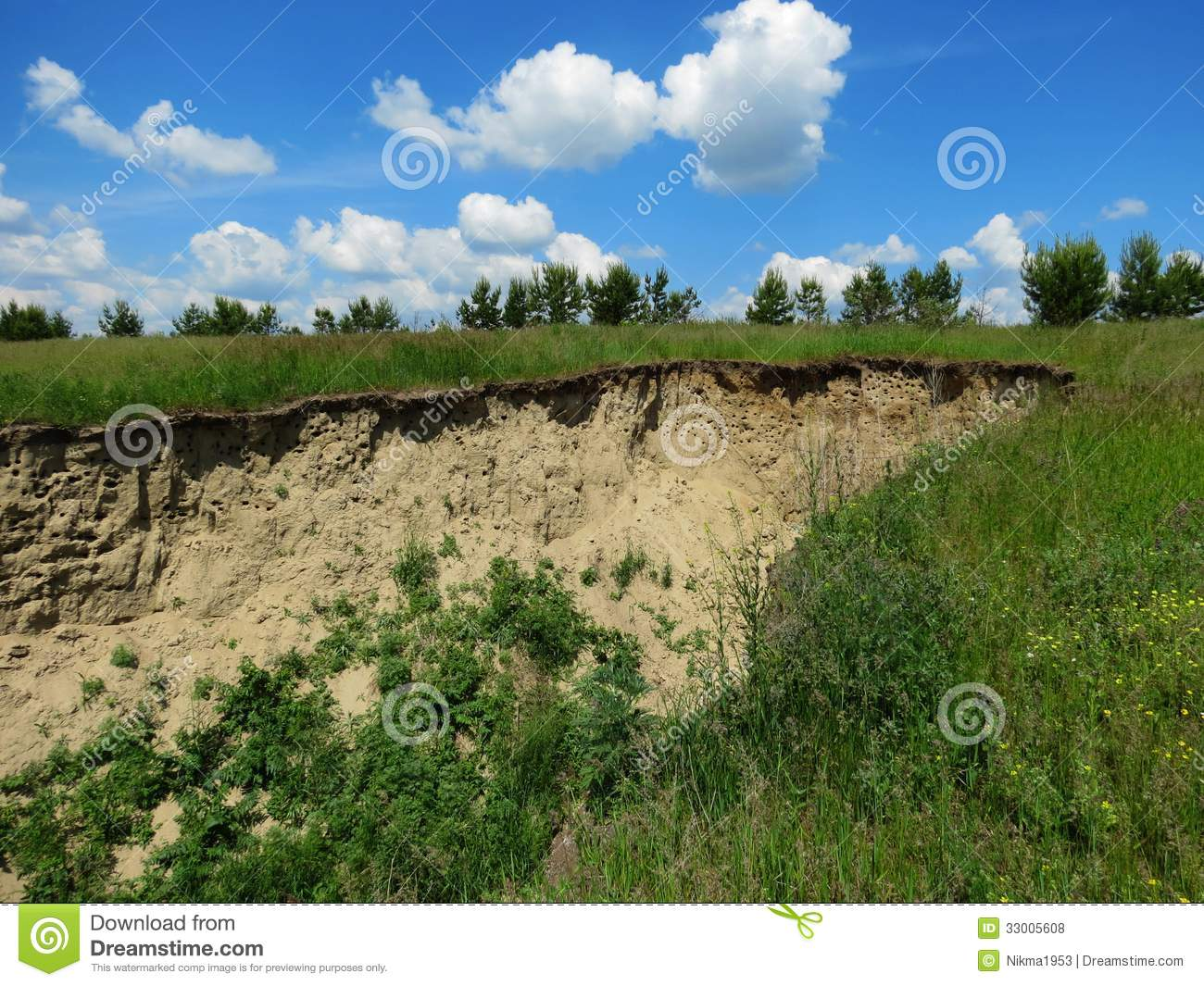 Golilla Steppe Royalty Free Stock Image Cartoondealer