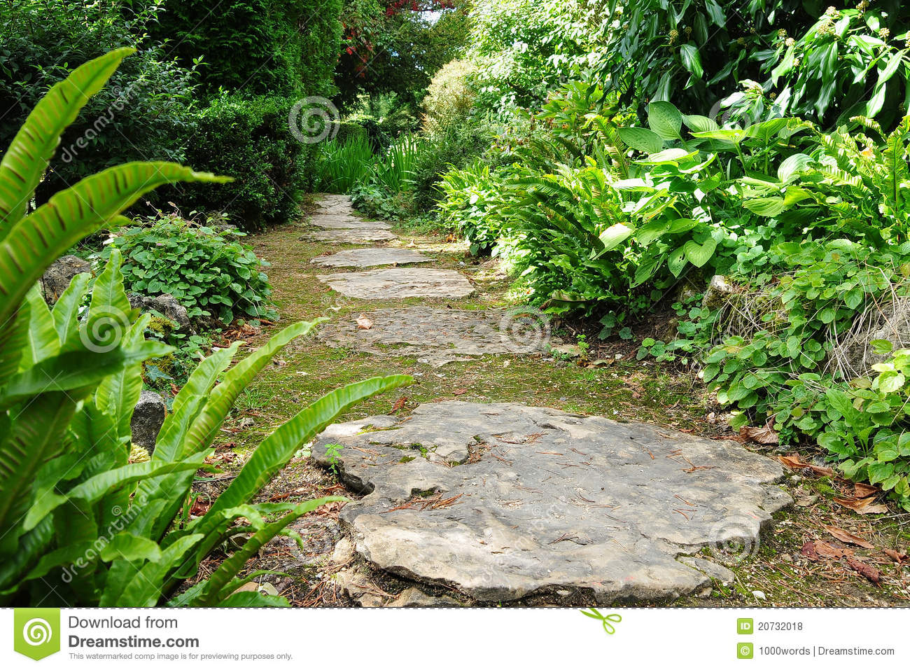 Stepping stone garden path stock photo image of beautiful for Stone stepping stones for garden paths