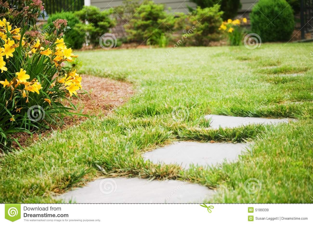 Stepping stones in front yard stock image image 5189339 for Front garden stones