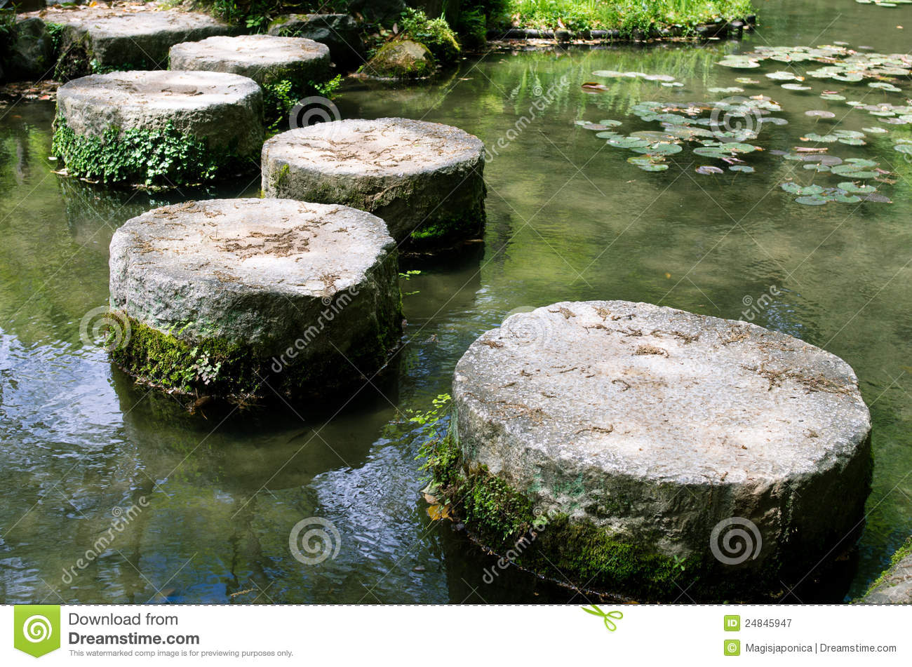 Stepping Stones On A Lotus Pond Stock Image Image 24845947