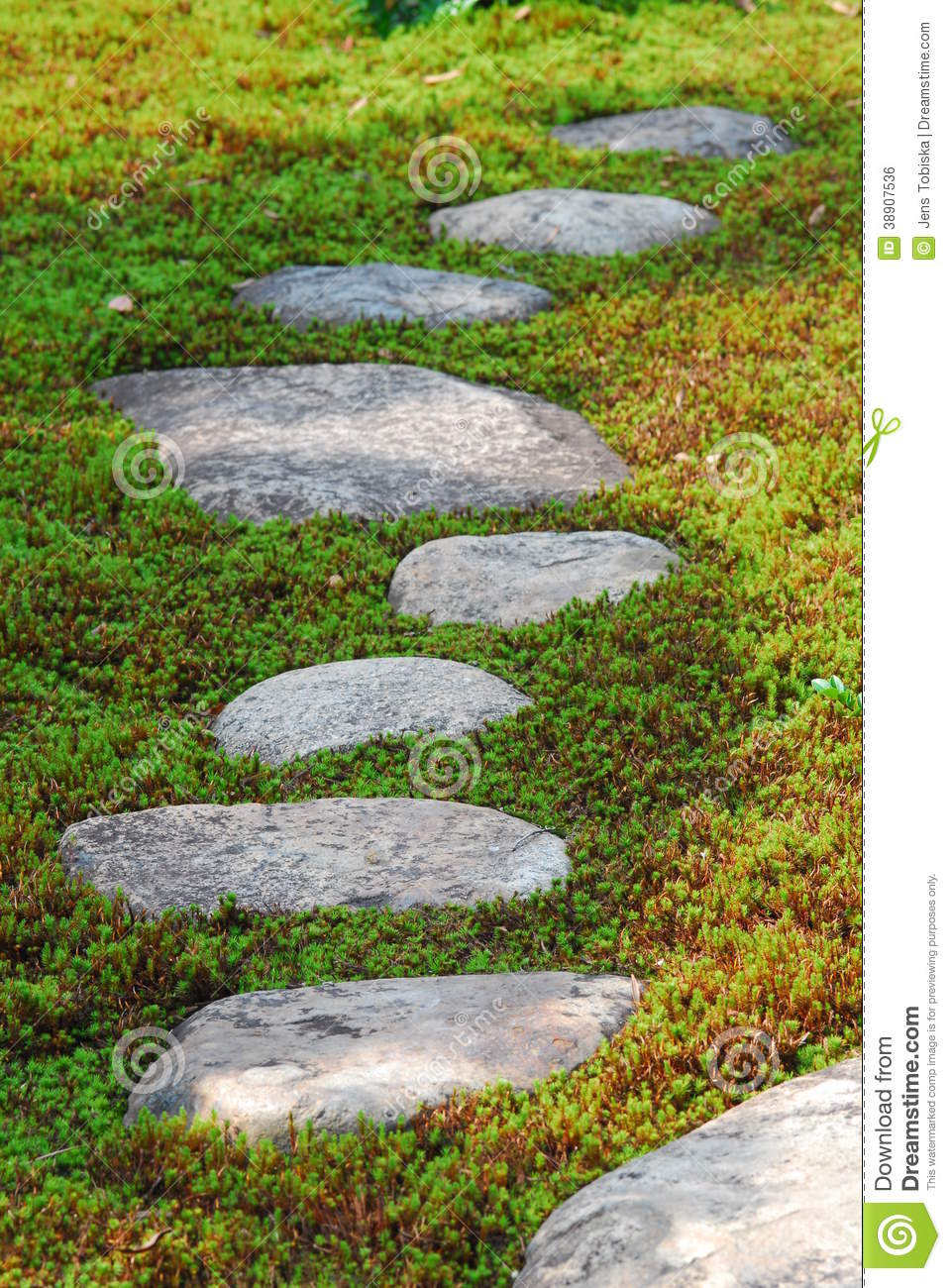 Stepping stones through moss stock photo image 38907536 for Japanese garden stones