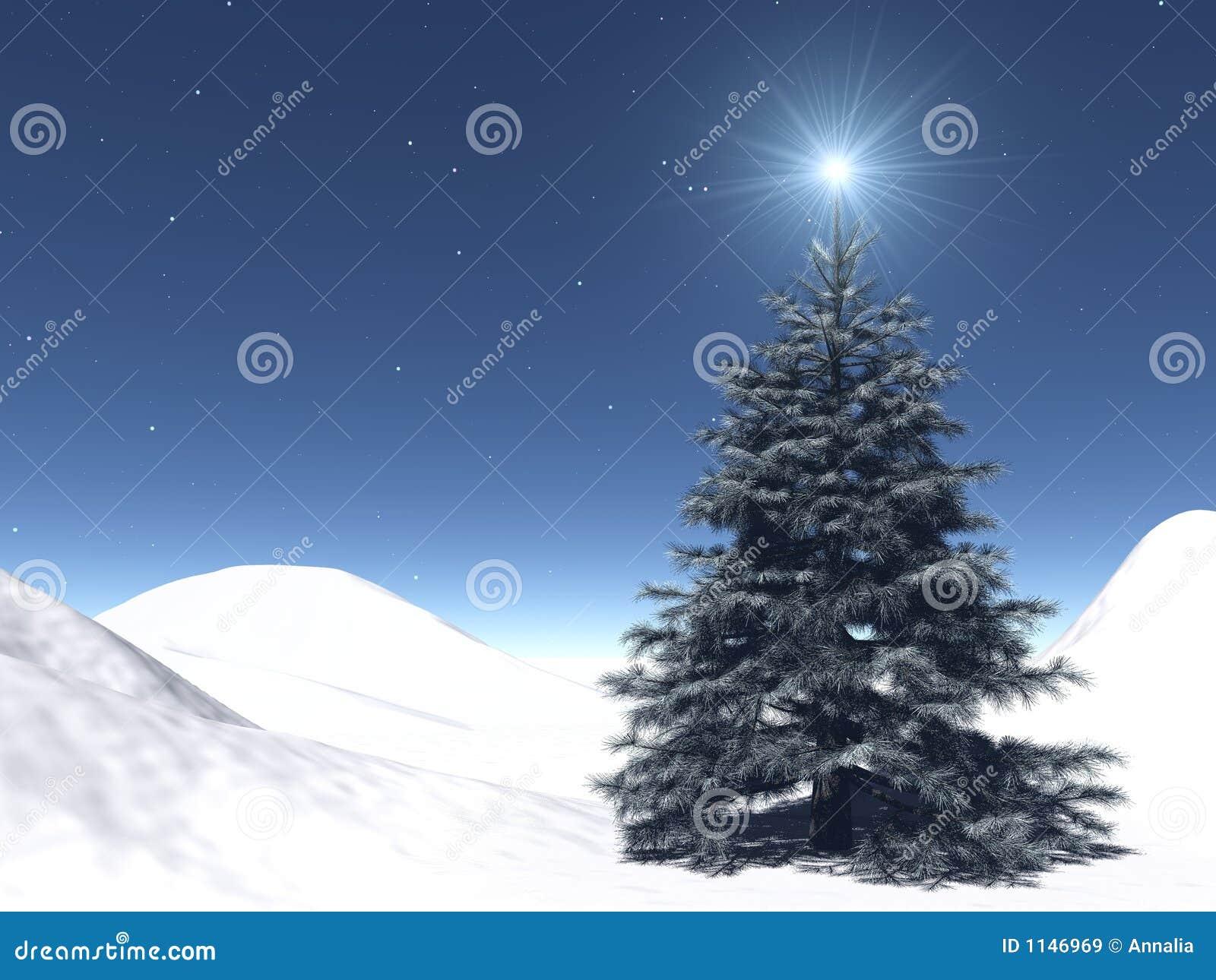 Sternenklares Weihnachten