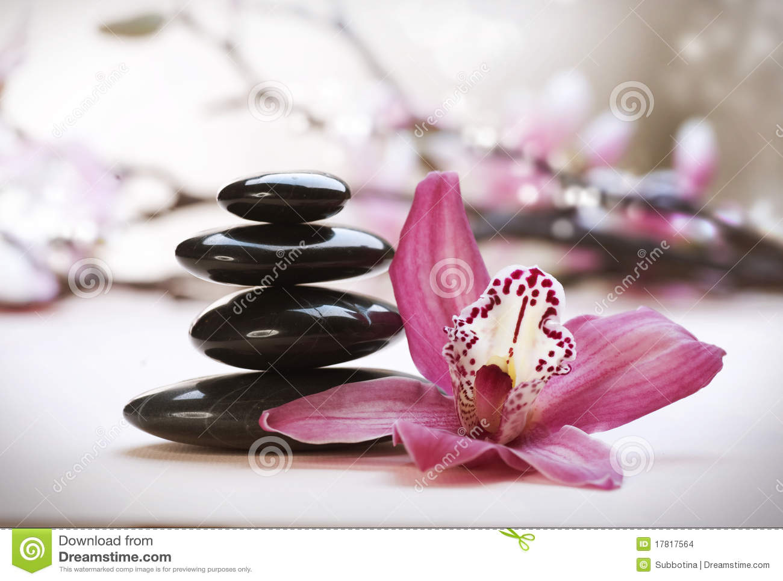 Sterta dryluje zen