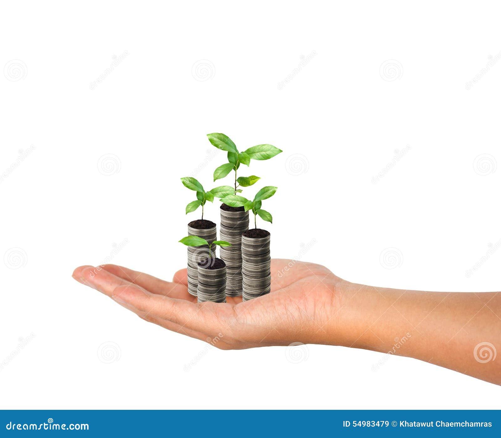 Sterta srebna moneta i mały rośliny pojęcia przyrost