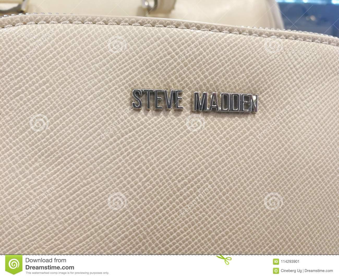 Compuesto proporcionar pobre  Steve Madden label editorial photo. Image of garment - 114293901