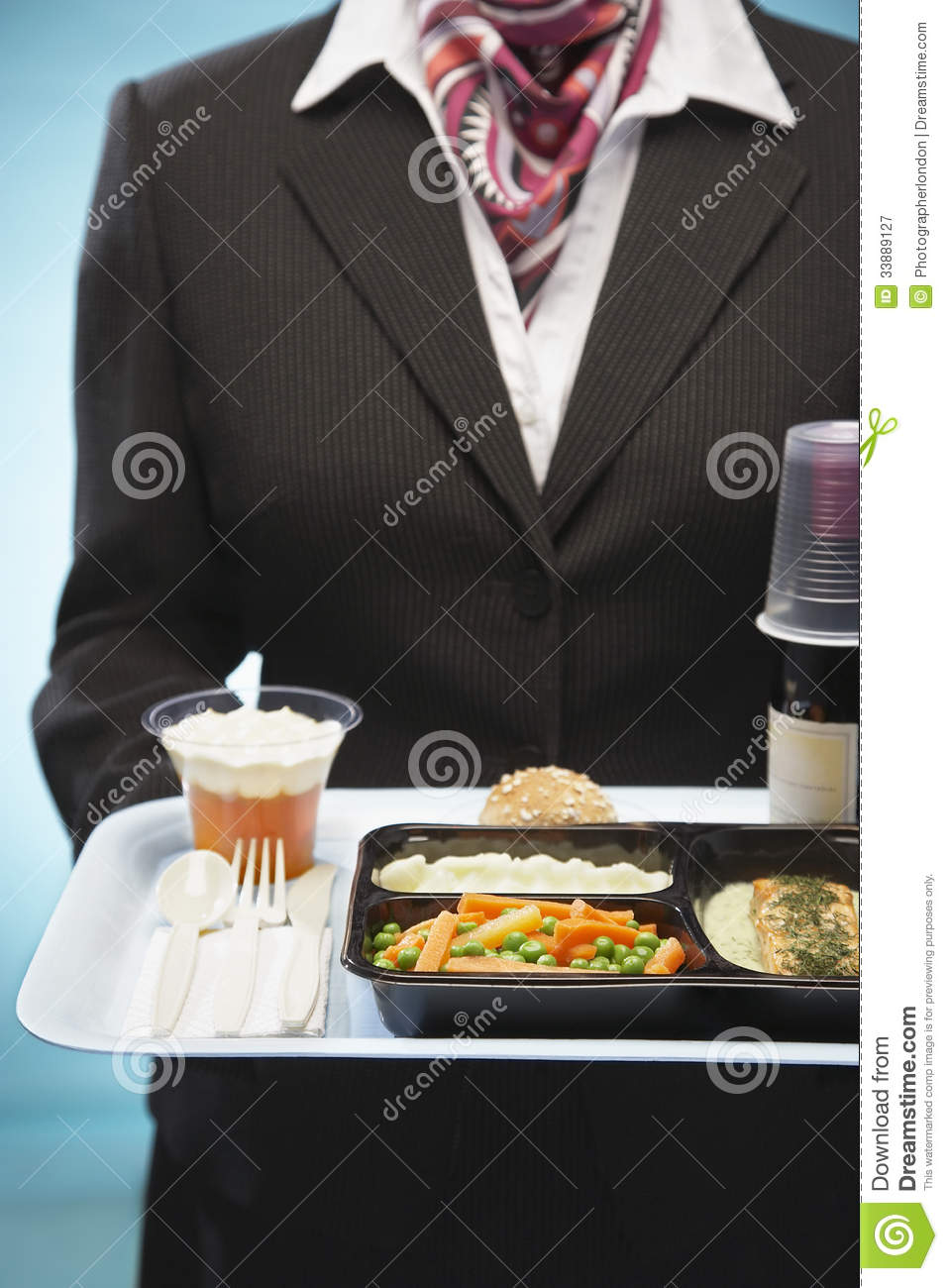 Stewardess Holding Tray With Airplane Food