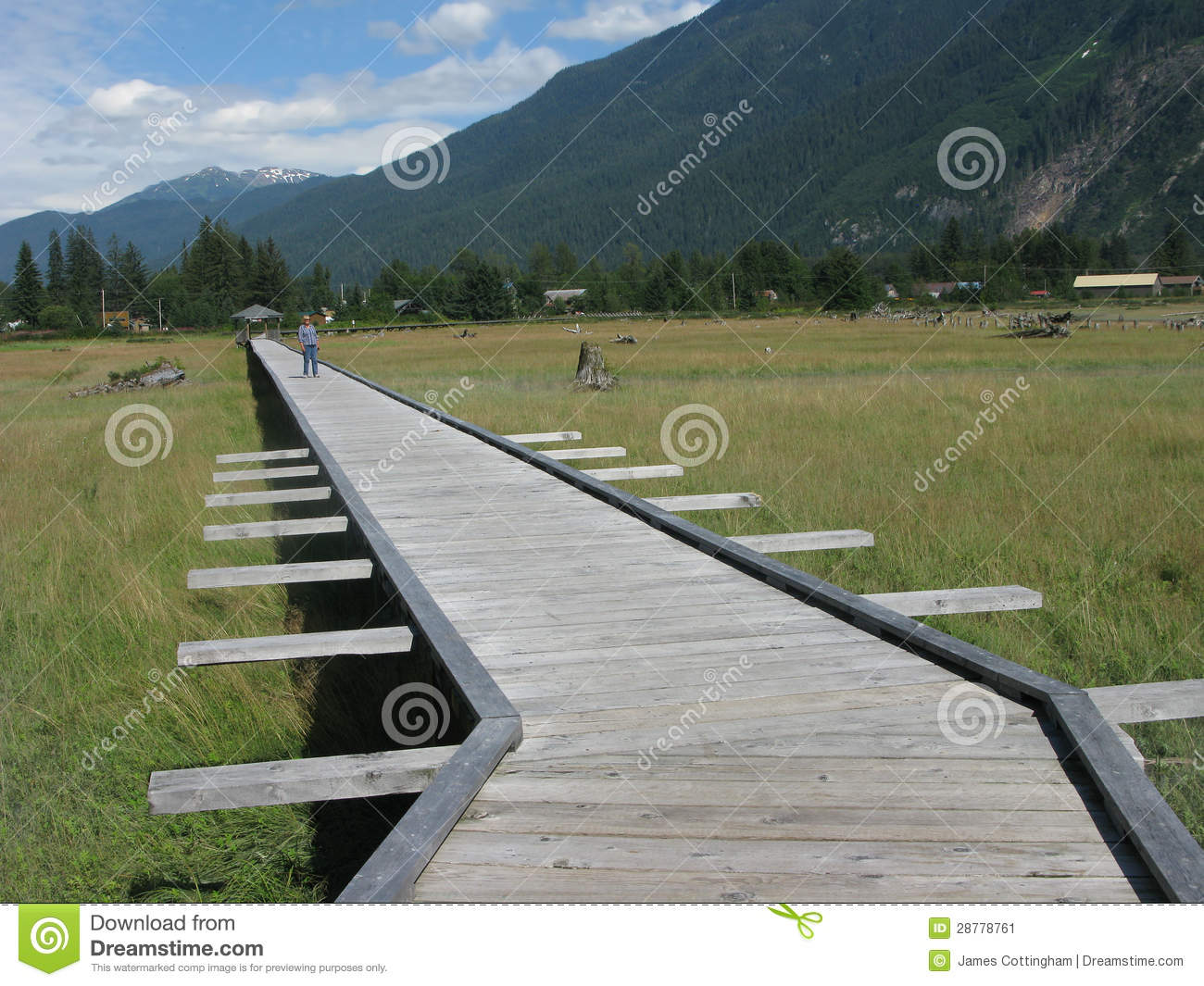 Stewart, British Columbia Estuary Boardwalk Stock Image - Image ...