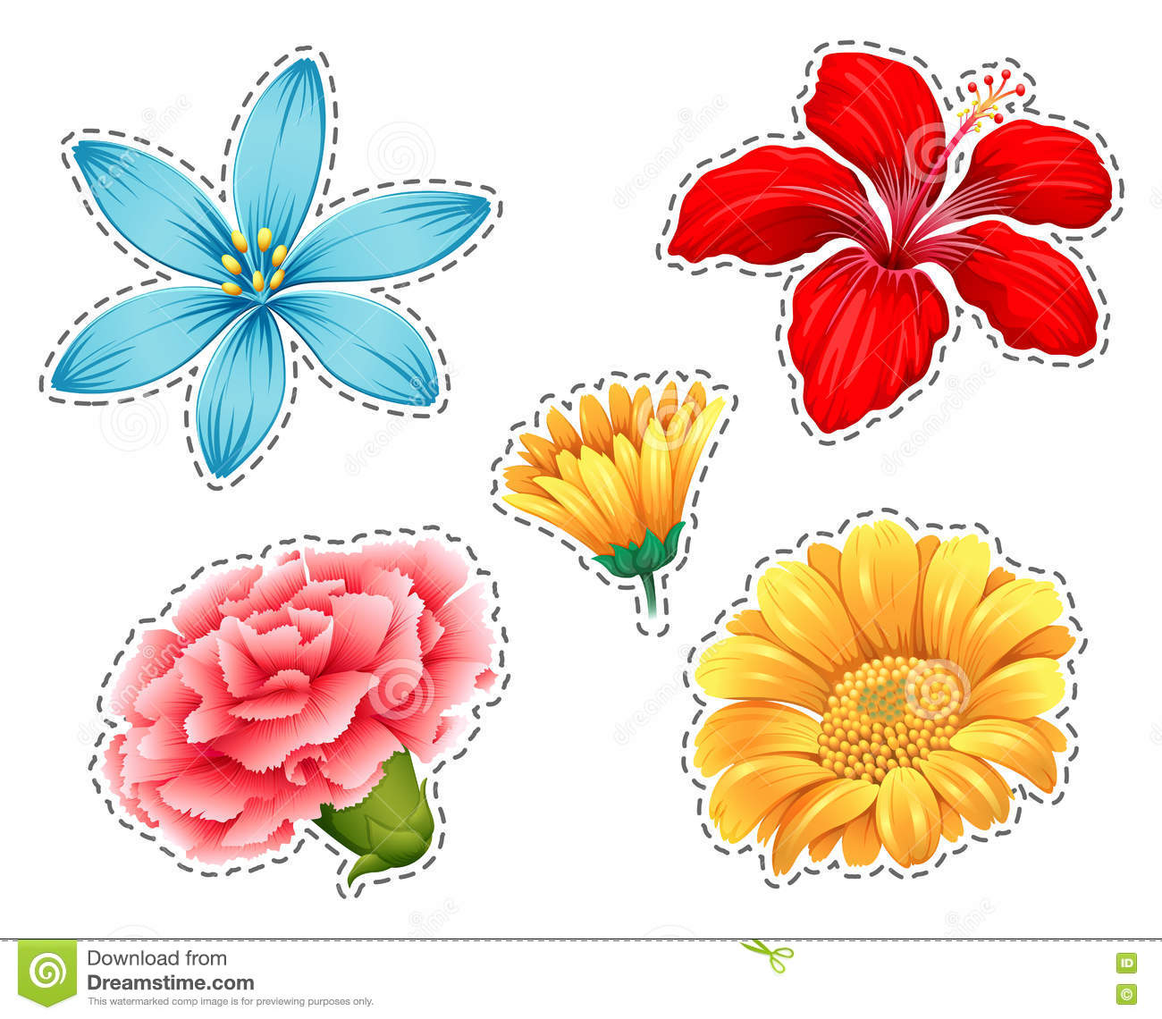 different types of flowers, Natural flower