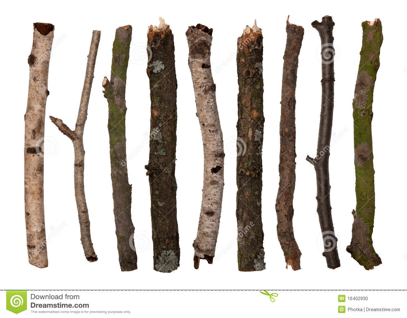 sticks and twigs stock photo image 16402930