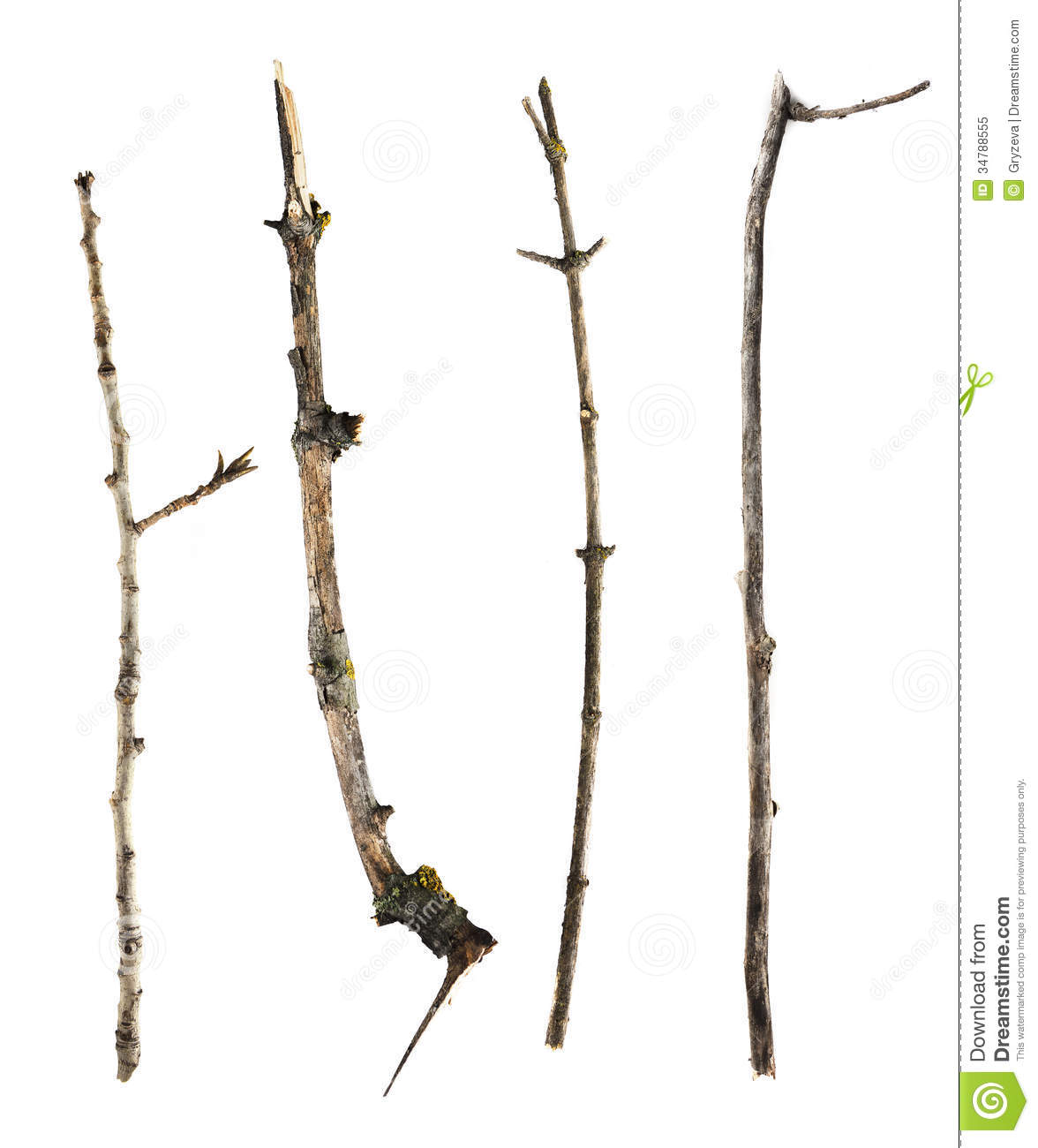 sticks and twigs isolated on white background royalty free Wood Bark Texture Clip Art Wood Bark Texture Backrounds