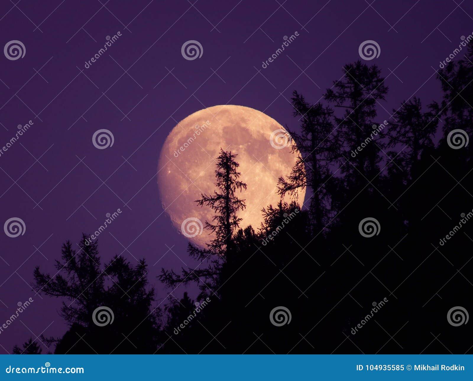 Stigning bakifrån träden månen