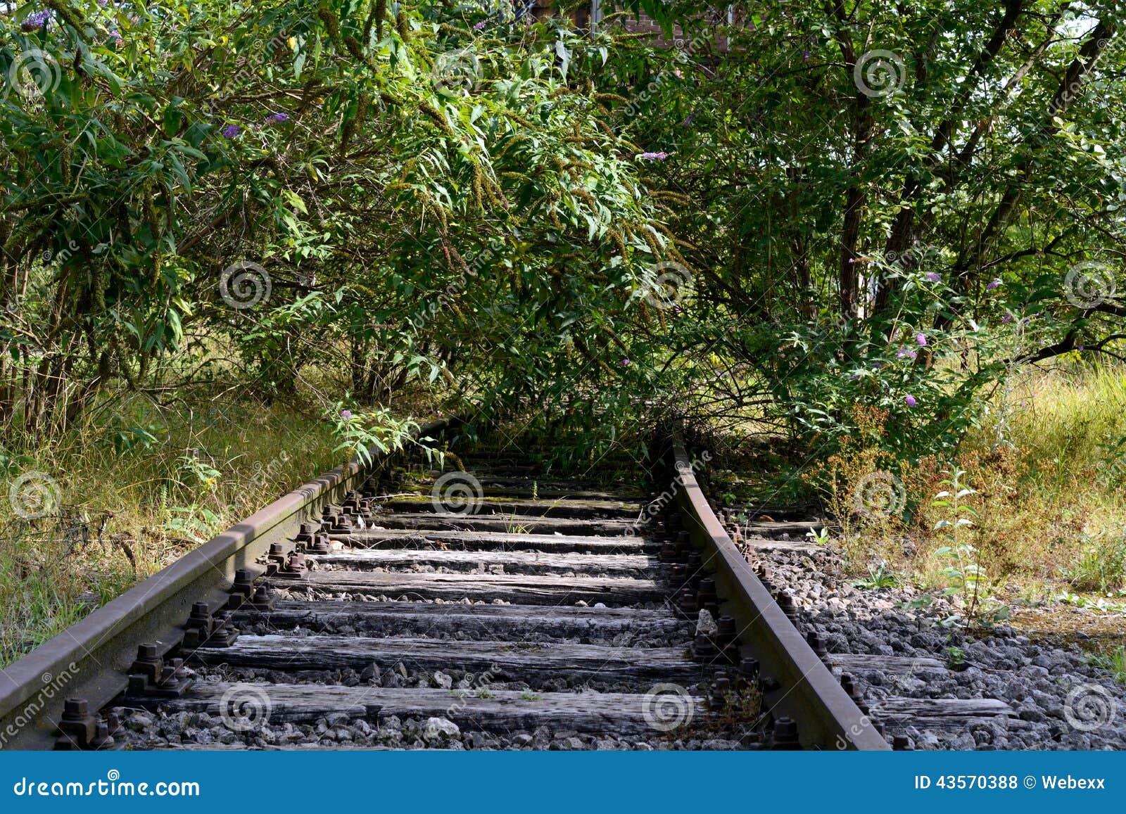 Still Laid Railway Track