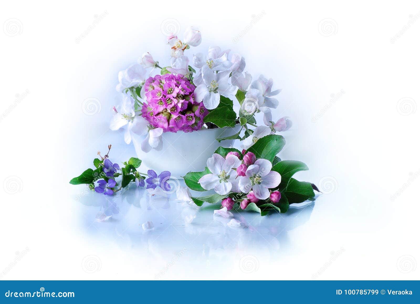 Burevestnik beautiful flowers in basket stock image image of burevestnik beautiful flowers in basket izmirmasajfo