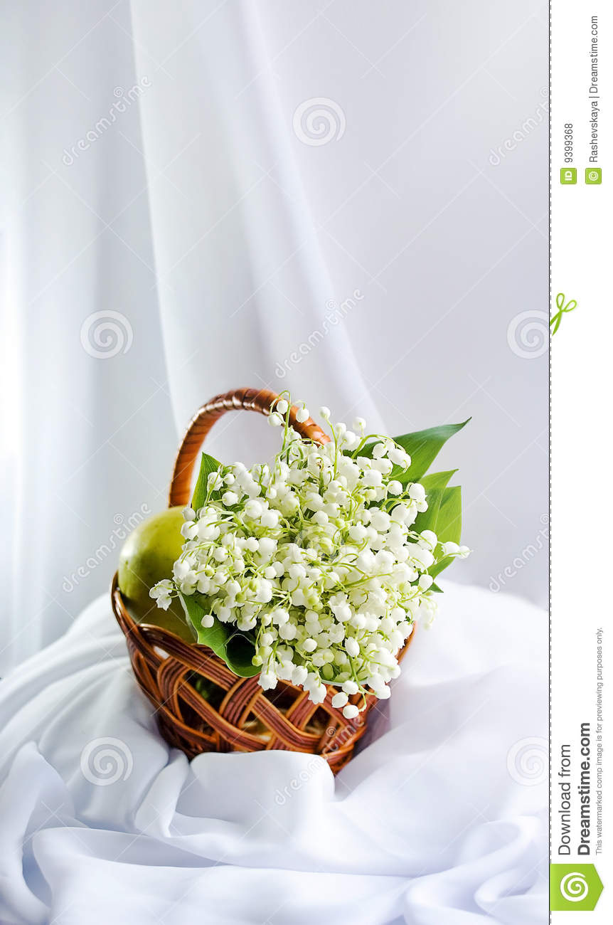 Still Life With The Flowers Of Lily Of The Valley Stock Photo