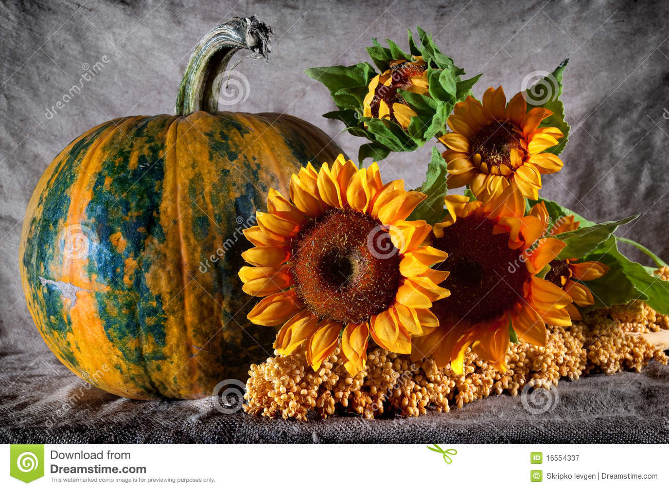 Still Life With Pumpkin And Sunflowers Royalty Free Stock ...