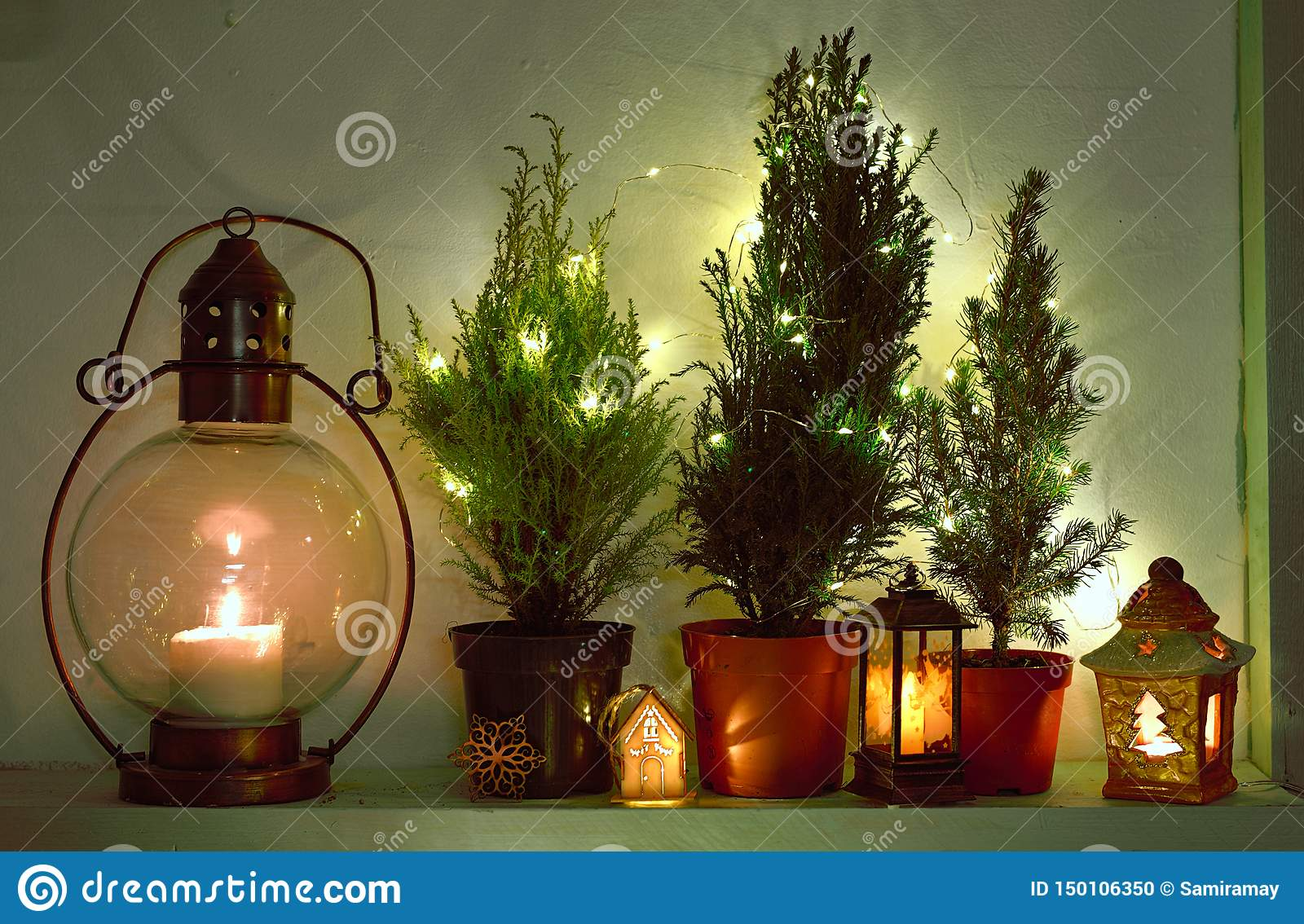 Still Life With Shining Lanterns And Natural Fir Trees Decorated With Lights Stock Photo Image Of Holiday Lantern 150106350