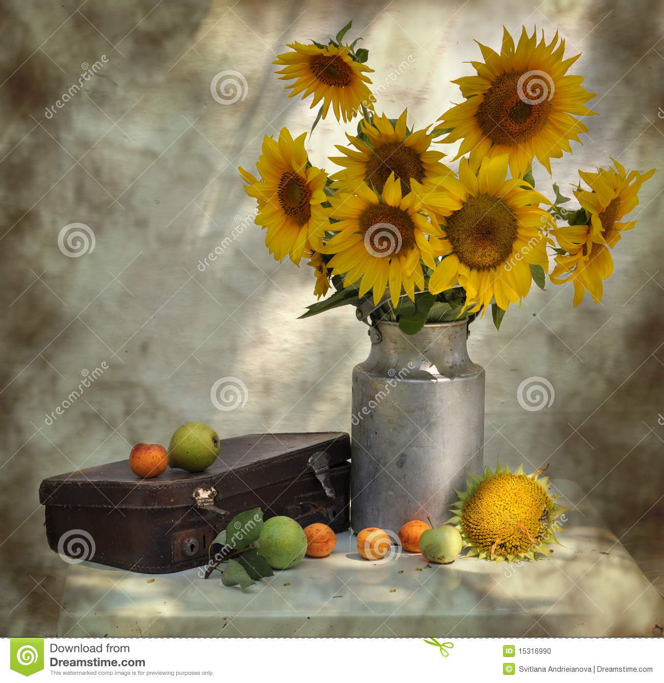 Download Still Life With Sunflowers And Old Suitcase Stock Photo