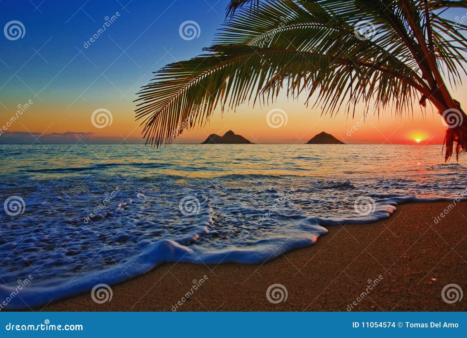 Stillahavs- soluppgång för strandhawaii lanikai