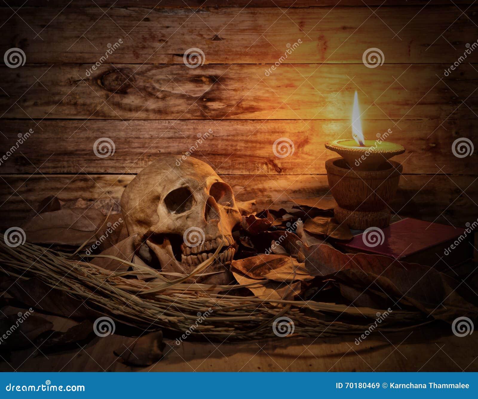 Stilleben av skallen med det torra bladet och stearinljuset tänder på träflik