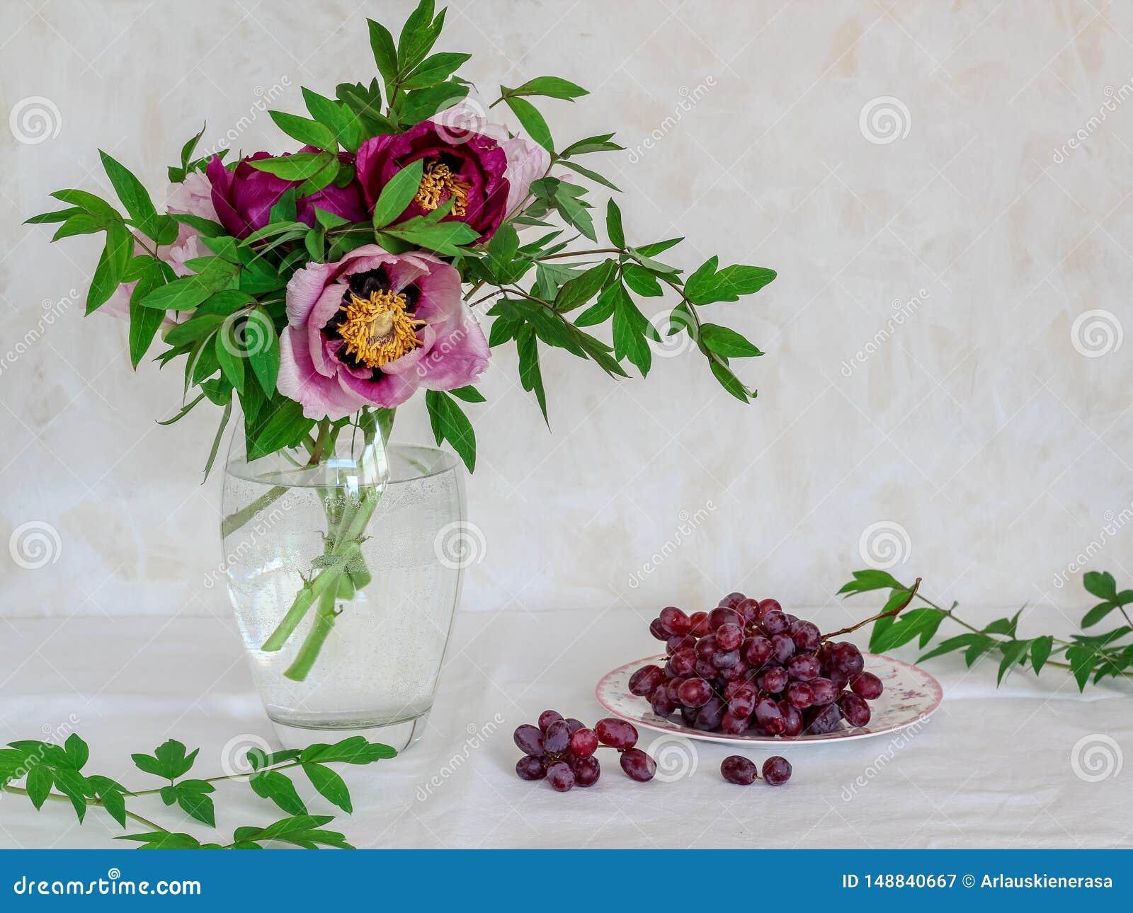 Stilleben med blommor och druvor Rosa och purpurf?rgade pioner i en vas p? en ljus bakgrund