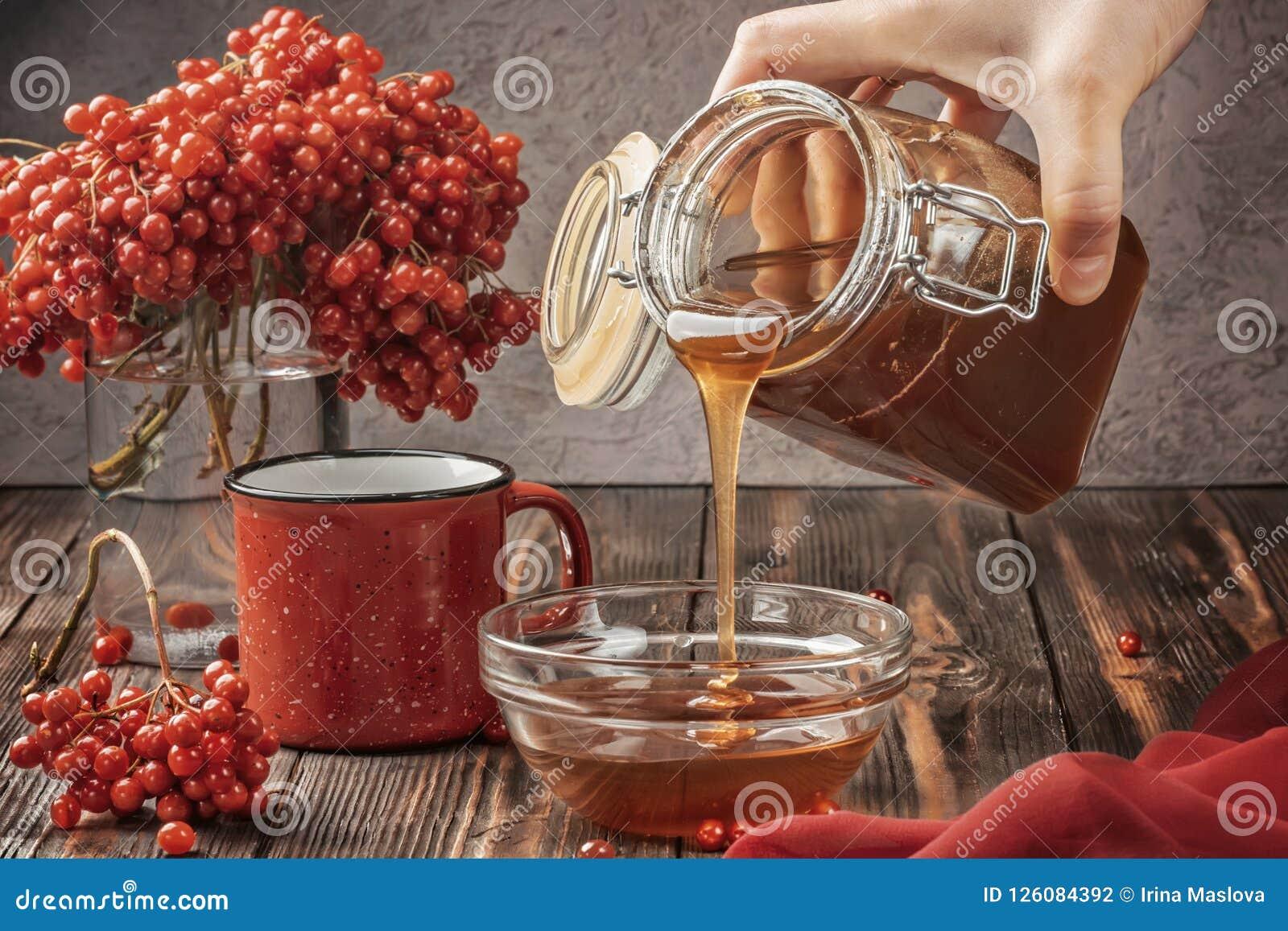 Stillebenbär av en viburnum i ett exponeringsglas och rånar av varm te och honung