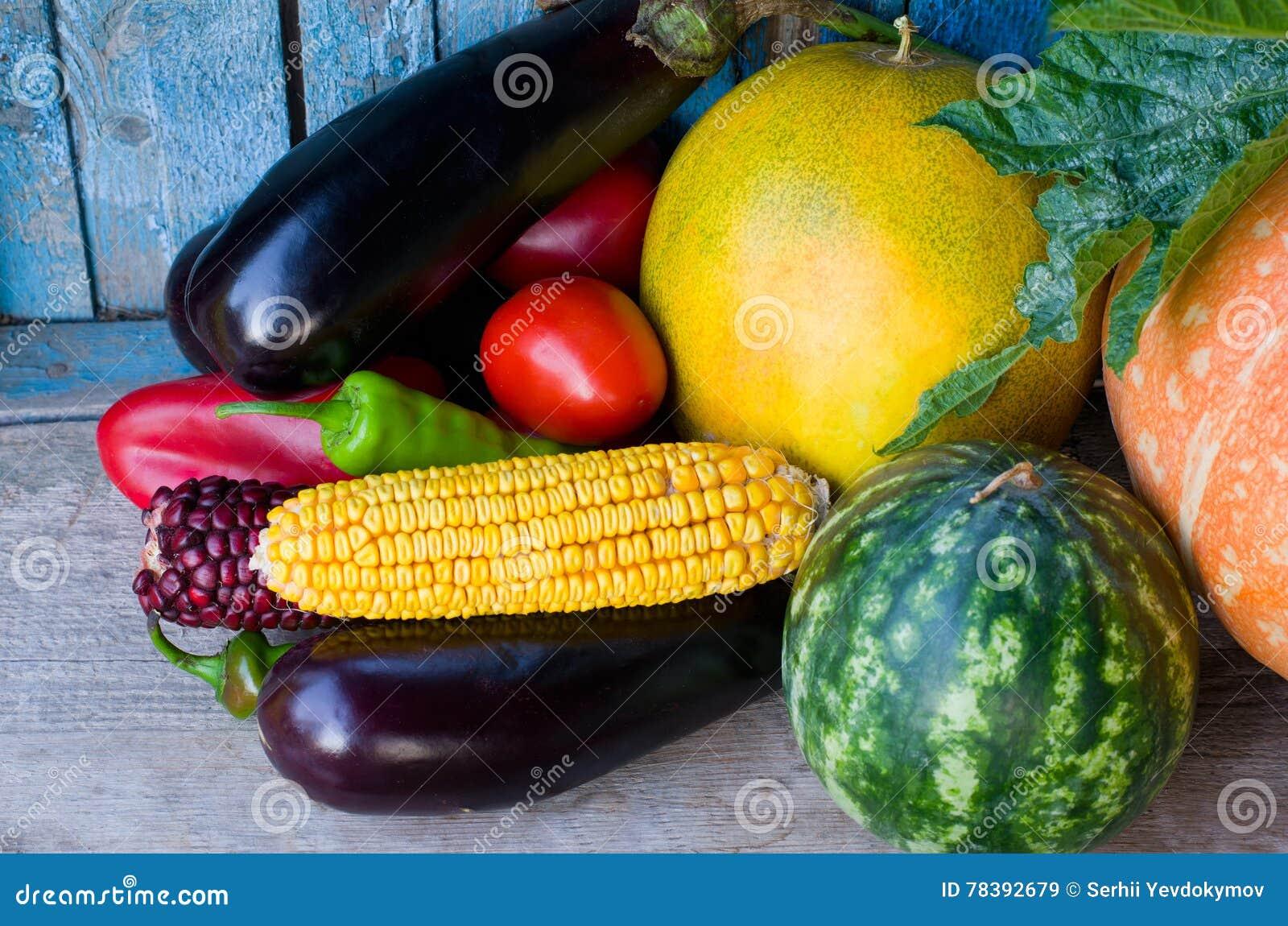 Stilleven van de herfstgroenten: aubergine, graan, watermeloen, kantaloep en tomaten