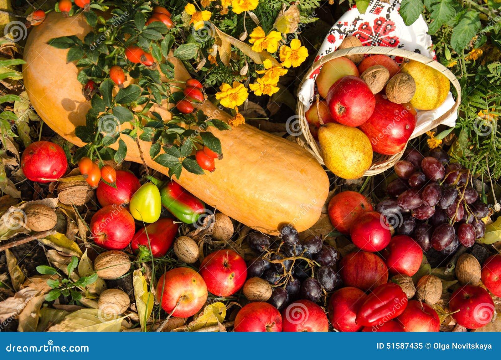 Stilleven van fruit en groenten in de tuin stock for Groenten tuin