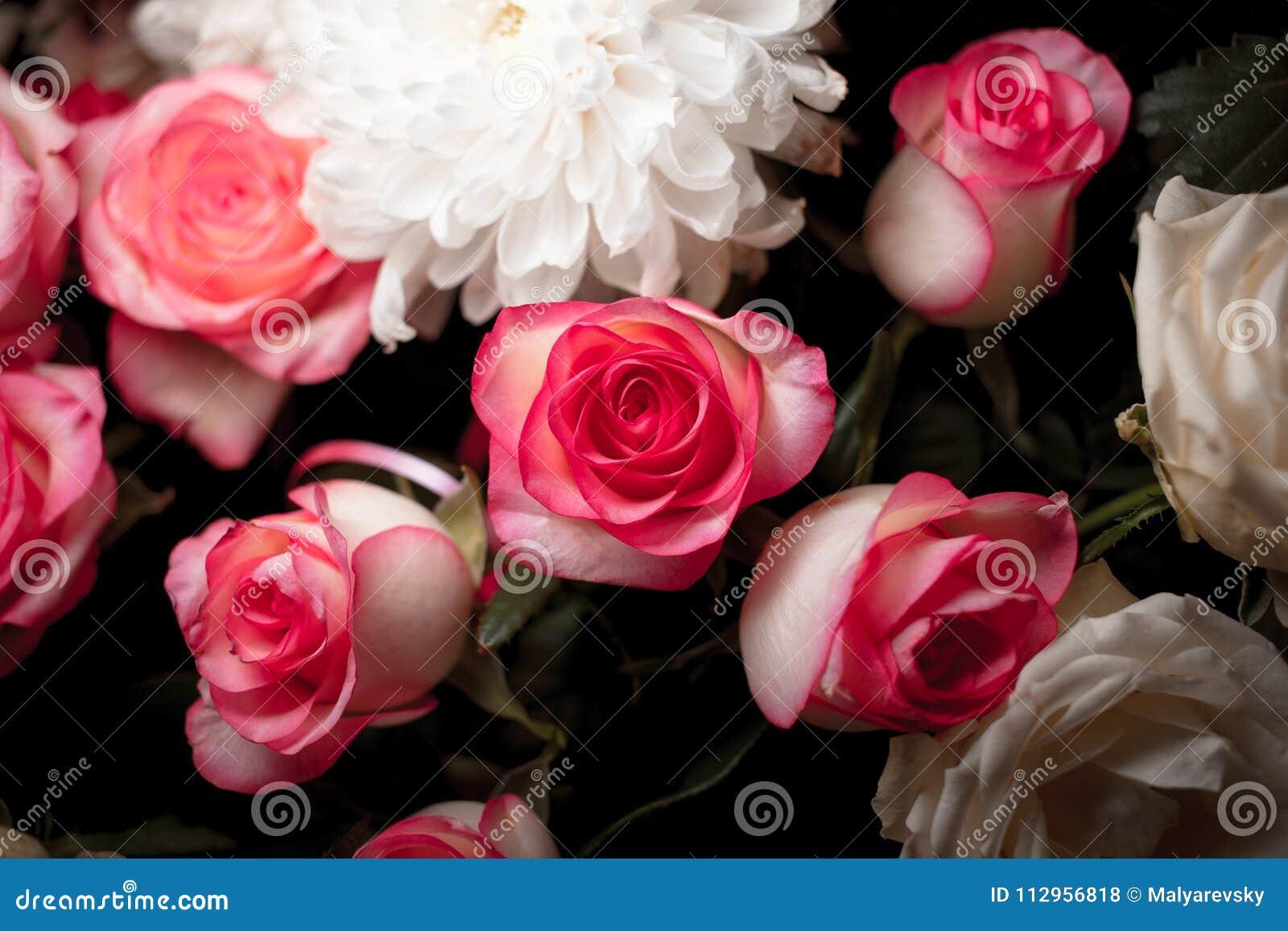Stilleven van roze boeketbloem Mooie verse roze rozen Rose Posy Wedding Bouquet