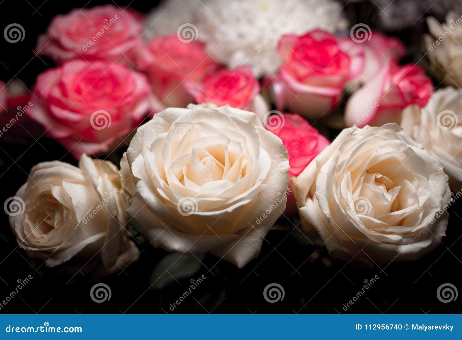 Stilleven van roze boeketbloem Mooie verse roze rozen Rose Posy Wedding Bouquet hoop van roze en witte verse rozen