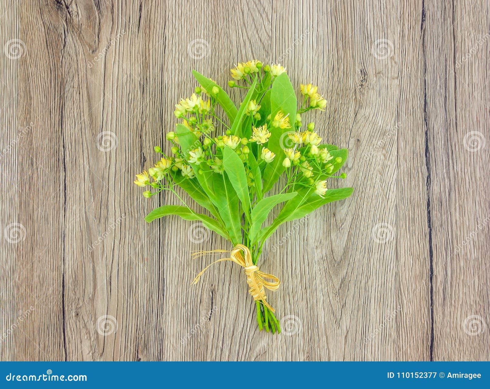 Stillleben mit Lindeblumenblumenstrauß Flache Lage, Draufsicht