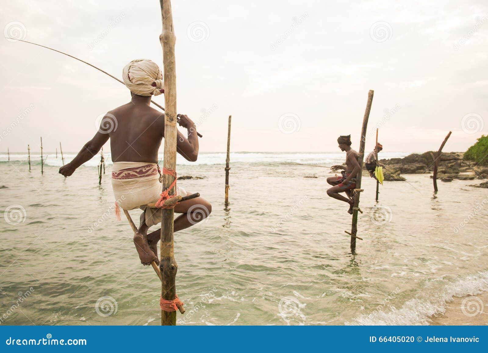 Stilt fisherman in koggala sri lanka editorial image for Fishing in november