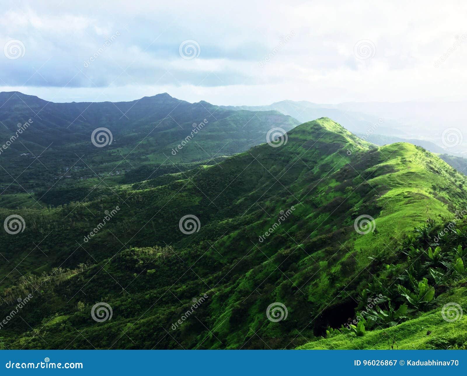 Sting góry