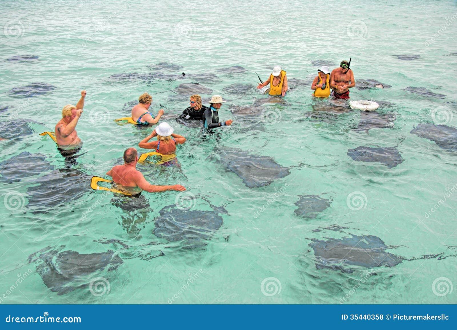 Stingray City , Grand Caymans Island .Tourist feed the Stingray fish.