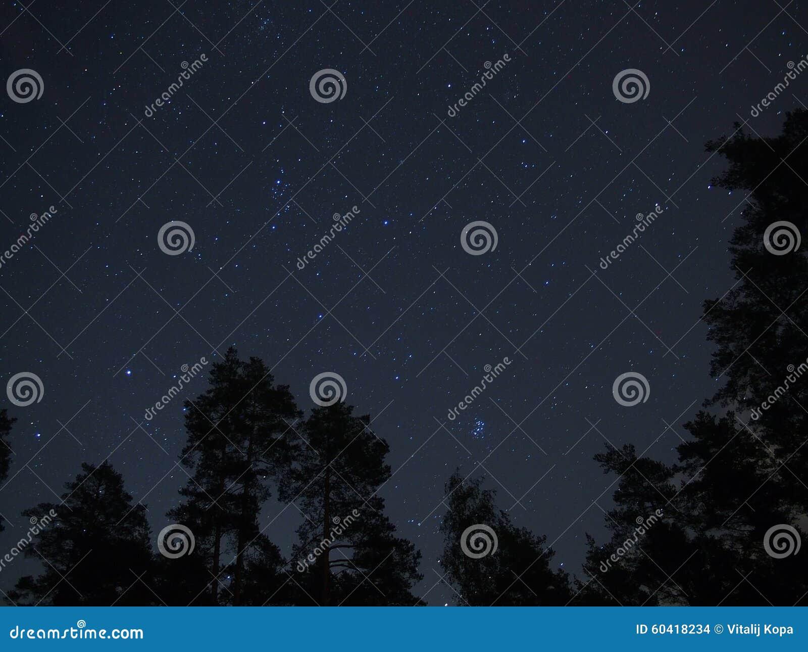 Stjärnor för natthimmel