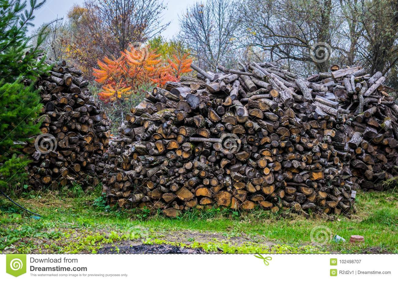 Stock of firewood for the winter