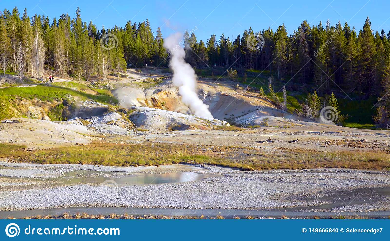 Stock image of Porcelain Basin Trail in Norris Geyser Basin, Yellowstone National Park, USA